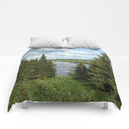 Landscape view on the taiga in Kargort village in Komi Republic of Russia. Comforters