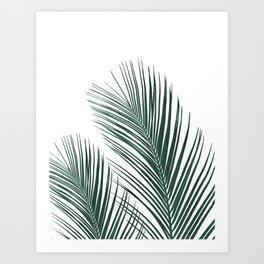 Tropical Palm Leaves #2 #botanical #decor #art #society6 Art Print
