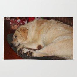 A Christmas Nap Rug