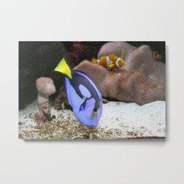 Coral Reef and Fish Metal Print