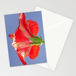 Side View of Scarlet Red Hibiscus In Bright Light Stationery Cards