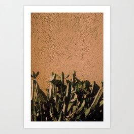 Kaktus #3 / color Art Print