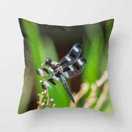Twelve Spotted Skimmer - Back Throw Pillow