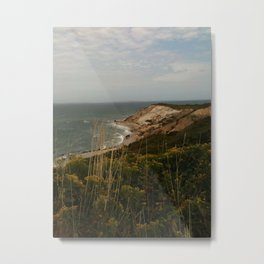 Martha's Vineyard  Metal Print