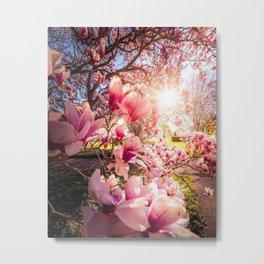 Nature 419 Metal Print