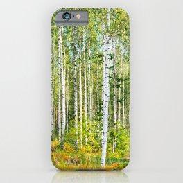 Sunny Day in Beautiful Birch Grove Landscape #decor #society6 #buyart iPhone Case