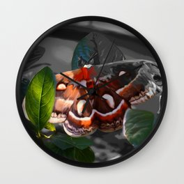 """As Daylight Ends"" - Cecropia Moth Painting Wall Clock"