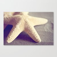 starfish Canvas Prints featuring Starfish by Dena Brender Photography