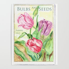 Old Bulbs & Seeds Pack Poster
