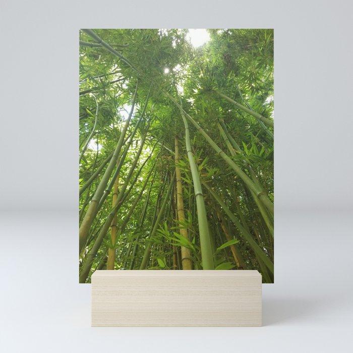 Bamboo Forest Mini Art Print