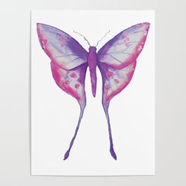 Purple Moth Poster