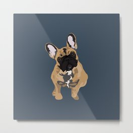 Zoey the Frenchie Metal Print