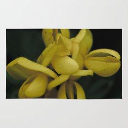 Yellow Buds Rug