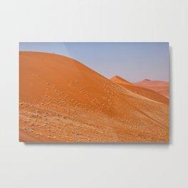 The red dunes of Sossusvlei Metal Print