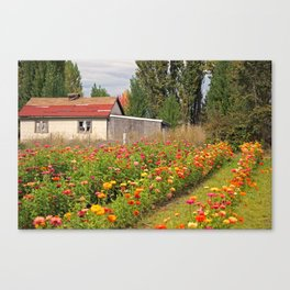 Out in the Country Canvas Print