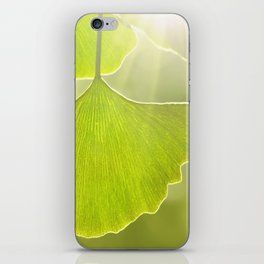 Ginkgo 104 iPhone Skin
