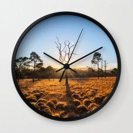 Coronation Plantation - Ireland (RR220) Wall Clock
