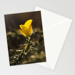Gorse Flower Stationery Cards