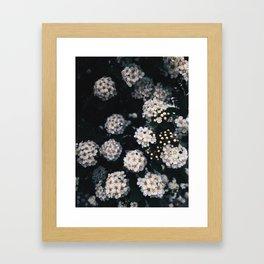 floralworks Framed Art Print