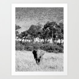 Elephant in Maasai Mara Art Print