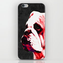 Southern Dawg By Sharon Cummings iPhone Skin