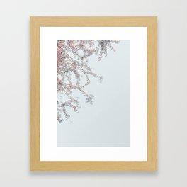 Delicate Blossoms Framed Art Print