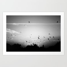 Migrating birds #02 Art Print