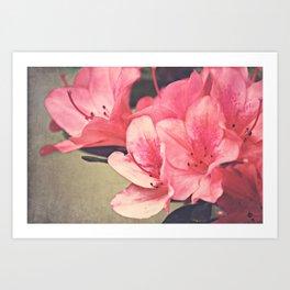 Strawberry Flowers Art Print