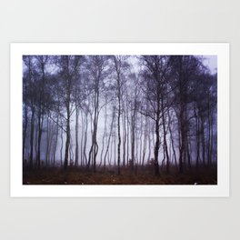 Fog through the Trees Art Print