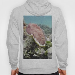 Red Nudibranch Hoody