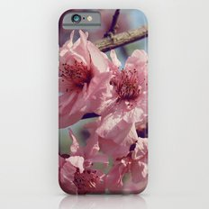 Sakura... One Spring in Beijing iPhone 6s Slim Case