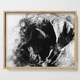 cane corso italian mastiff dog wsbw Serving Tray