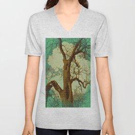 Spirit of the Wind; Green. Unisex V-Neck