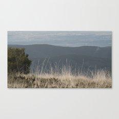 Straw Canvas Print