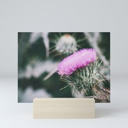 Thistle Mini Art Print