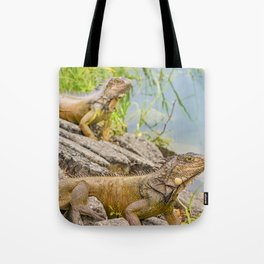 Iguanas at Shore of River Tote Bag