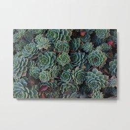 Botany Monotony Metal Print
