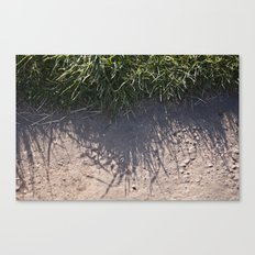 The Grass and it's Shadow Canvas Print