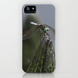 Launch Pad iPhone Case