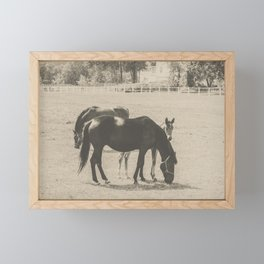 Horses and Foal Framed Mini Art Print