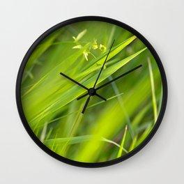 Shallow Blades of Grass Wall Clock
