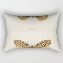 Great Spangled Fritillary (Argynnis Cybele) from Moths and butterflies of the United States (1900) b Rectangular Pillow