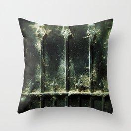 Web of dreams Throw Pillow
