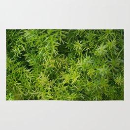 Green Life Rug