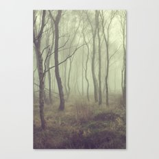 More Misty Mornings Canvas Print