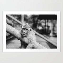 Cute Monkey (Black and White) Art Print