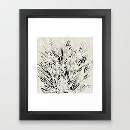 H. Fasciata Succulent Black White Print Framed Art Print