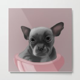 Grey chihuahua in a pink bowl Metal Print