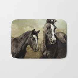 Feldspar and Ohanzee Bath Mat
