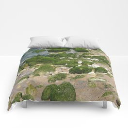 it rocks Comforters